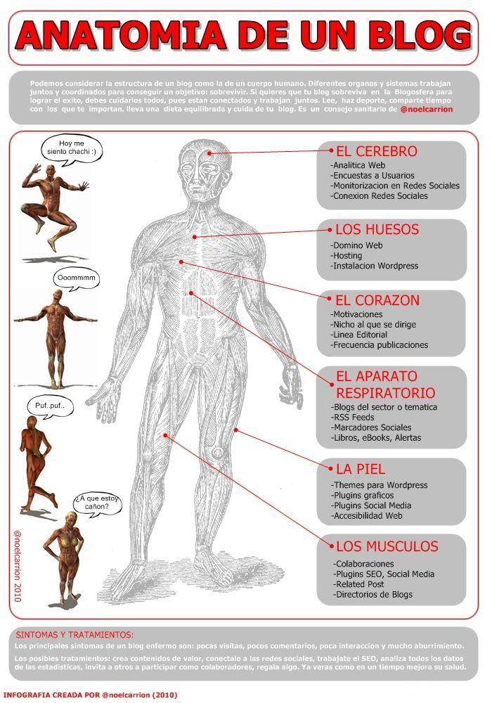el blog como cuerpo humano